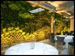 Cafe de Paris Restaurant en el puerto Malaga (3) (España)