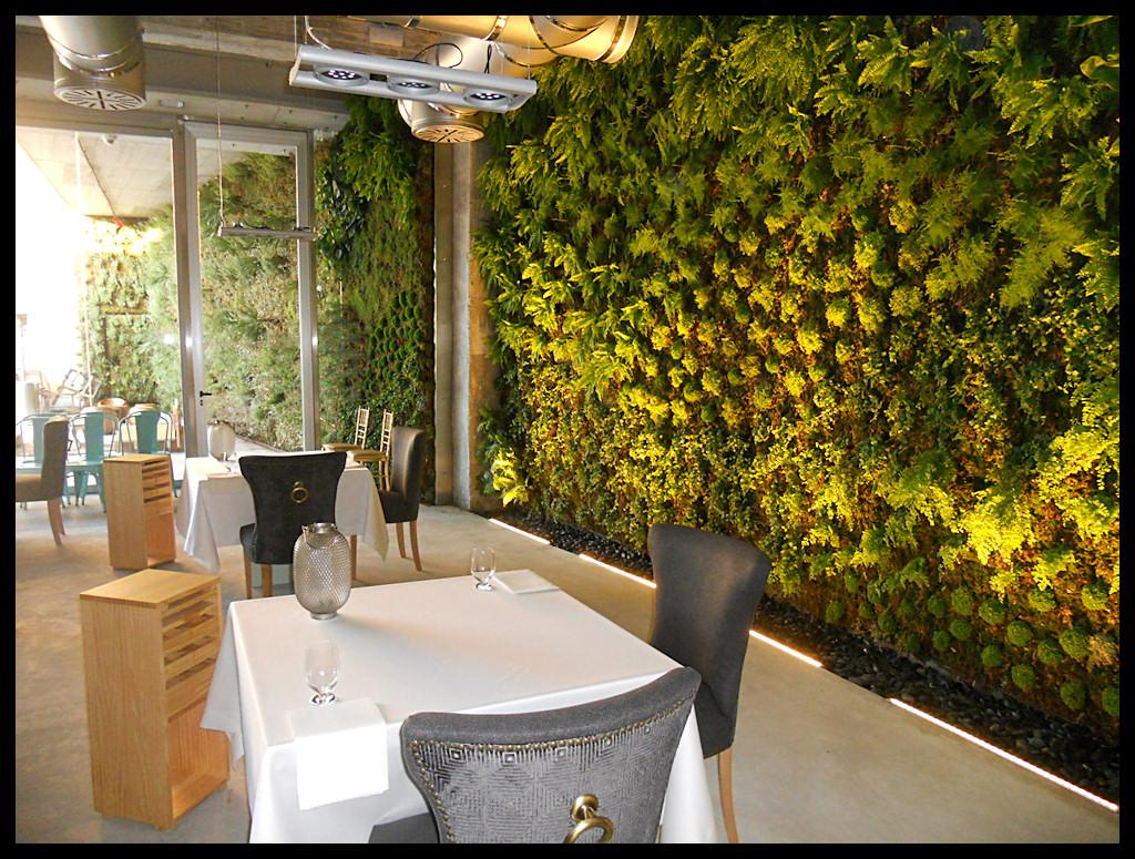 Muros y fachadas verdes construcciones verdes for Que planta para muro exterior vegetal