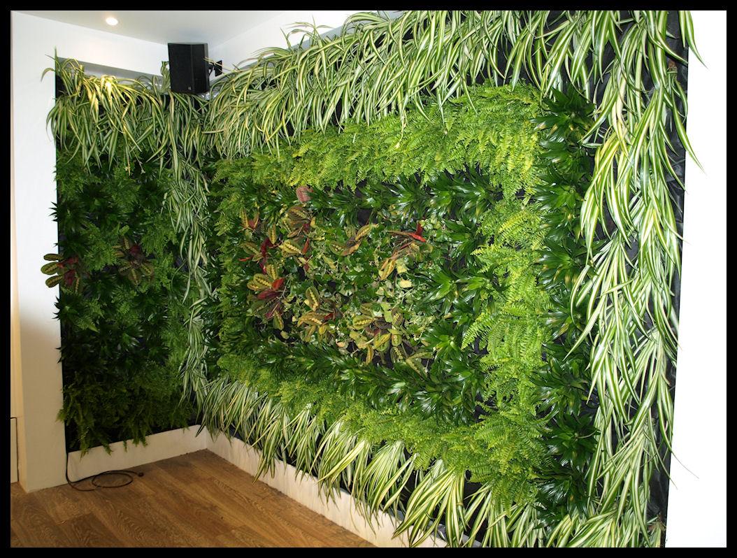 Muro verde interior con sphagnum y plantas for Plantas verticales de interior