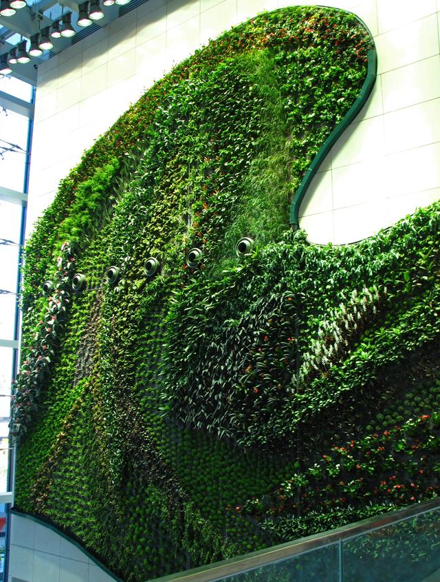 Muros y fachadas verdes construcciones verdes for Jardines verdes