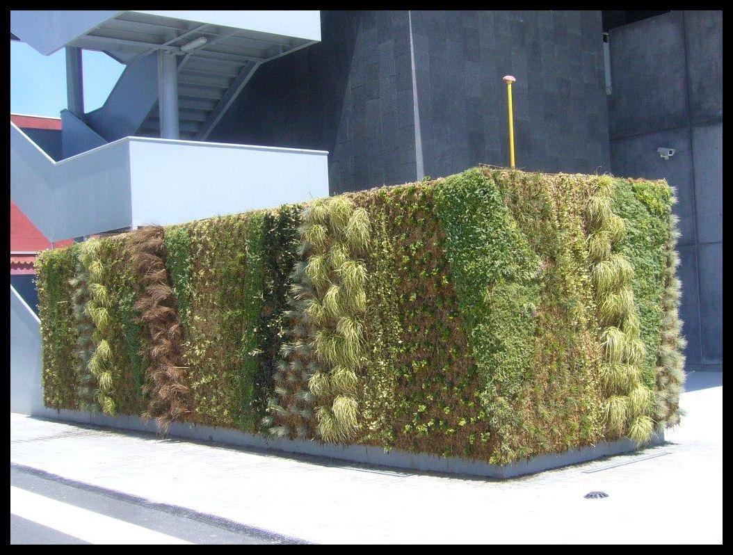 Muros y fachadas verdes construcciones verdes for Muros verdes beneficios