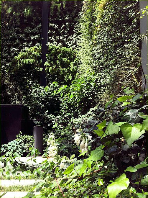 Jardin Vertical por José de Suyma