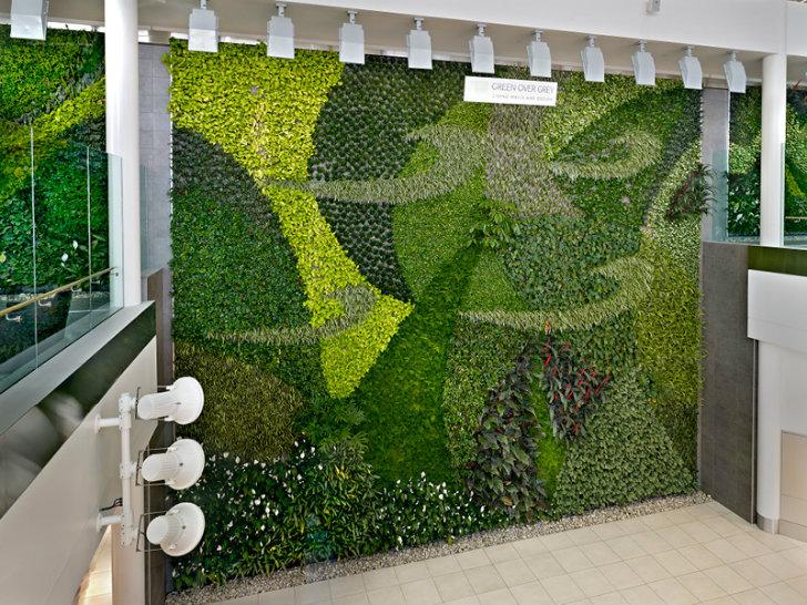 Jard n vertical aeropuerto de edmonton canad for Plantas para muros verdes verticales