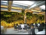 2011 Cafe de Paris Restaurant en el puerto de Málaga 4