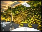 2011 Cafe de Paris Restaurant en el puerto de Málaga 5
