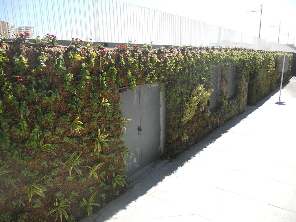 Muros verdes de malaga espa a construcciones verdes for Muros verdes beneficios